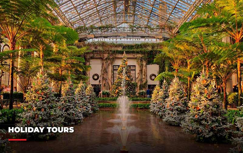 View the holiday tours Eyre has to offer.